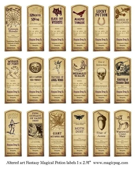 potion label template 25 best ideas about potion labels on