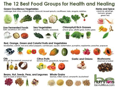 food the best nutrition for your four legged friend books 17 best images about superfood combos on