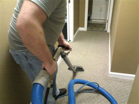Carpet Cleaning Tips For Spring Renew Carpet Care Call