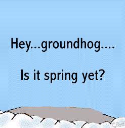 groundhog day anime marmottes fantaisies gifs anim 233 s de marmottes page3