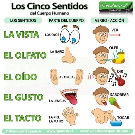 spanish elementary science los cinco sentidos del cuerpo humano la vista el olfato el o 237 do