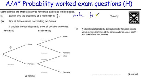 Tree Diagrams Probability Grade 11
