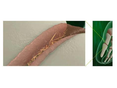alimenti contro acido urico cristalli di acido urico al microscopio farmacia news