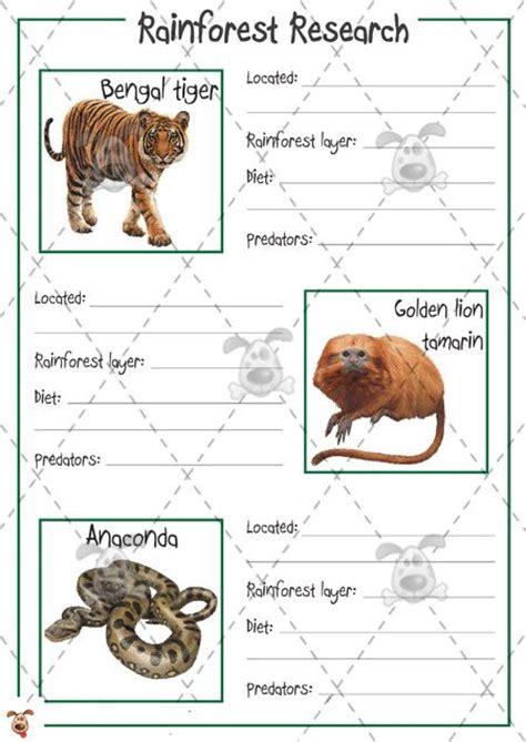 printable rainforest animal pictures teacher s pet rainforest animal research colour