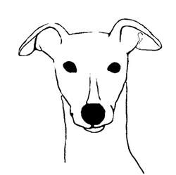 Whippet Dog Coloring Pages Sketch Template sketch template