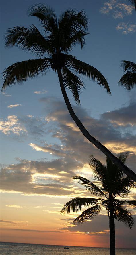 caribbean beach sunset  iphone wallpapers