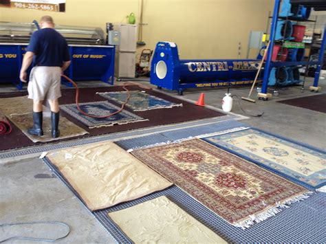 rugs for owners area rug cleaning advice for pet owners in palm coast fl area rug cleaning jacksonville fl