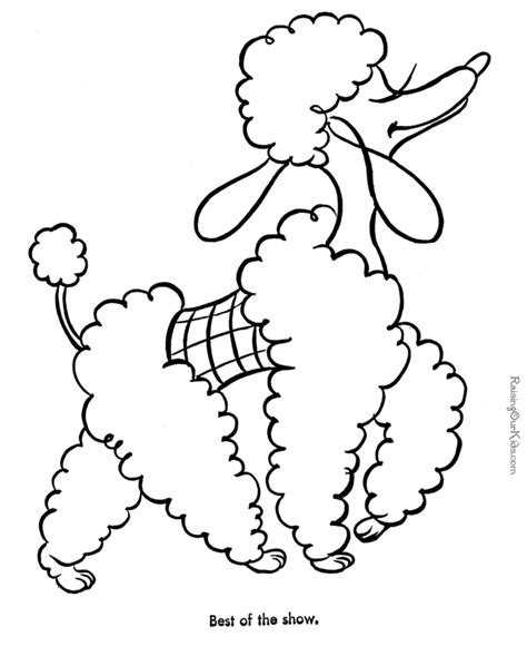 poodle puppy coloring page dog picture for kids to color coloring pinterest dog