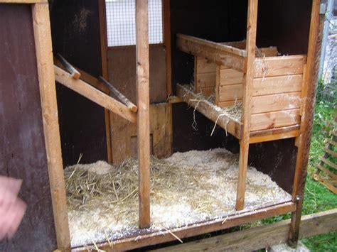 Wie Baue Ich Einen Hühnerstall by Transportabler H 252 Hnerstall