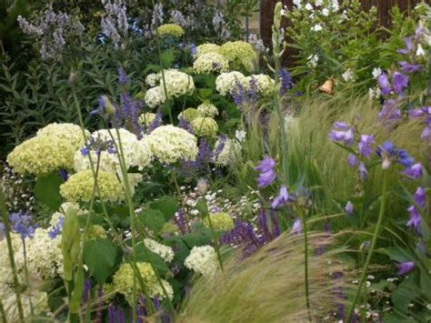 Garten Gestalten Hortensien by Hortensien Die Gro 223 E Vielfalt Mein Sch 246 Ner Garten