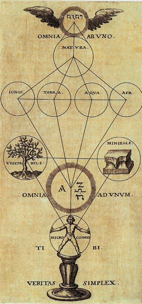 libro alchemy mysticism hermetic the tree of pans alchemy and mysticism from the hermetic museum author theophilius