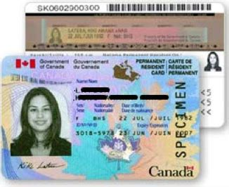 canadian citizenship card template when do i renew my permanent resident card niren