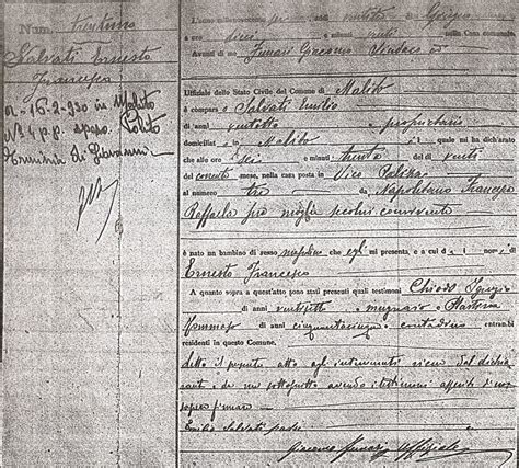 Cosenza Italy Birth Records Napolitano