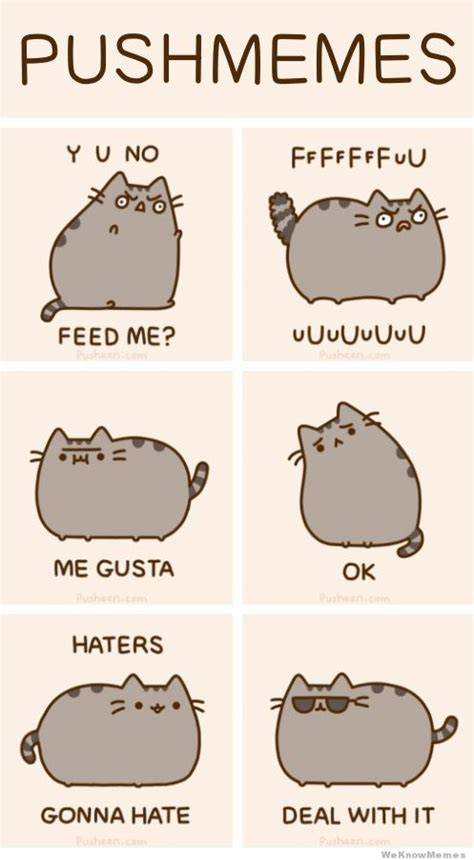 Pusheen Memes - image 387455 pusheen know your meme
