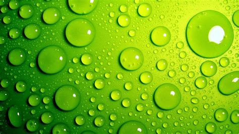 wallpaper green fresh fresh green backgrounds wallpaper allwallpaper in 2507