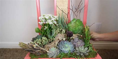 Succulent Planter Diy by Diy Succulent Planter Diy Joy
