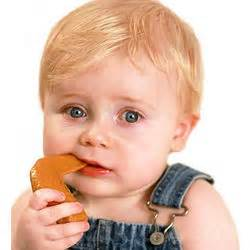 Appeteether Chompin Chicken Wing chompin chicken wing appeteether findgift