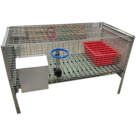 gabbia conigli ingrasso gabbia per conigli ingrasso con rete antitopo cm 100