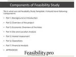 Business Study Template by Feasibility Study Template
