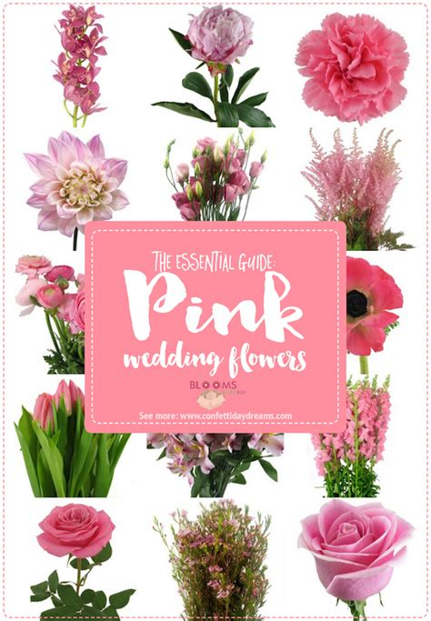 Wedding Flower Pictures Pink by The Essential Pink Wedding Flowers Guide Types Of Pink