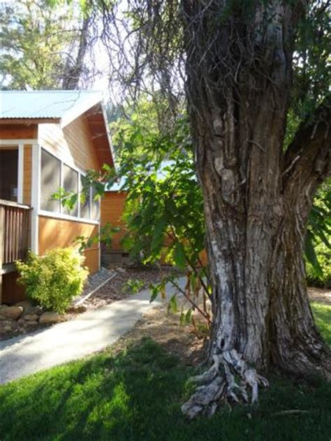 Coho Cottages Willow Creek Ca by Coho Cottages Updated 2017 Prices Hotel Reviews