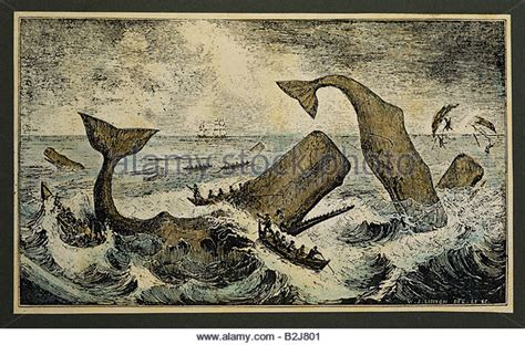 whaling longboat whaling ship 19th century stock photos whaling ship 19th
