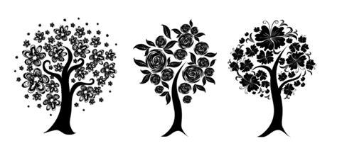 arboles decorativos arboles decorativos cipres semperviven en caja de plantas