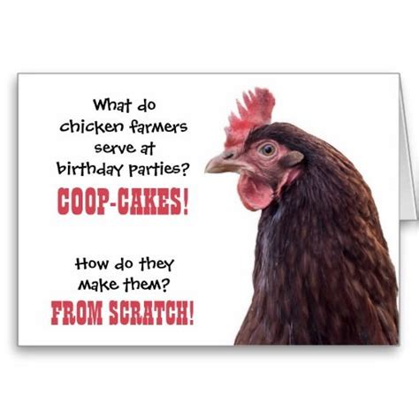 Chicken Birthday Card Birthday Chicken Jokes With Hen Photo Card Shopping
