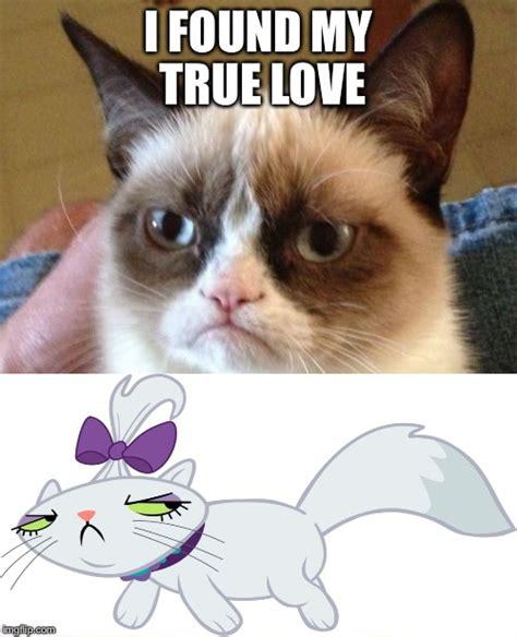 Grumpy Cat Love Meme - grumpy cat love story imgflip