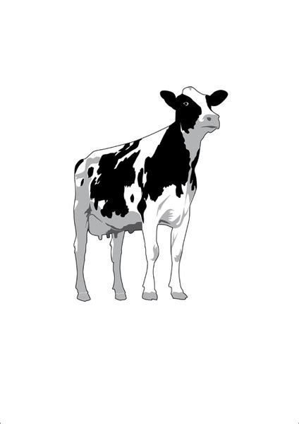 cow pattern vector art different dairy cow design vector graphics free vector in