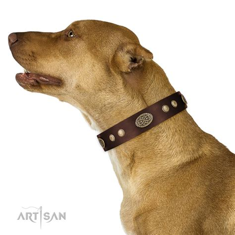 old fashioned dog grooming pictures for sale leather dog collar buy uk brown dog collar with