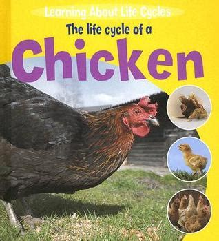 and chicken books the cycle of a chicken by ruth thomson reviews