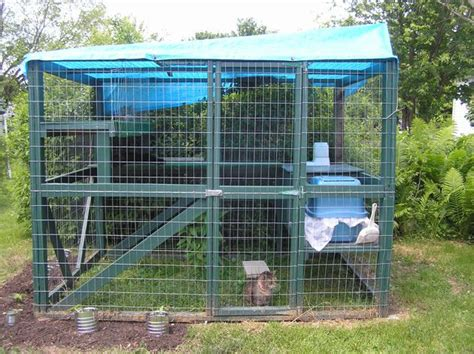 backyard cat enclosure catio showcase ideas for cat enclosure to