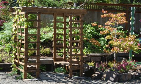 wood arbor with trellis on side and top to grapes