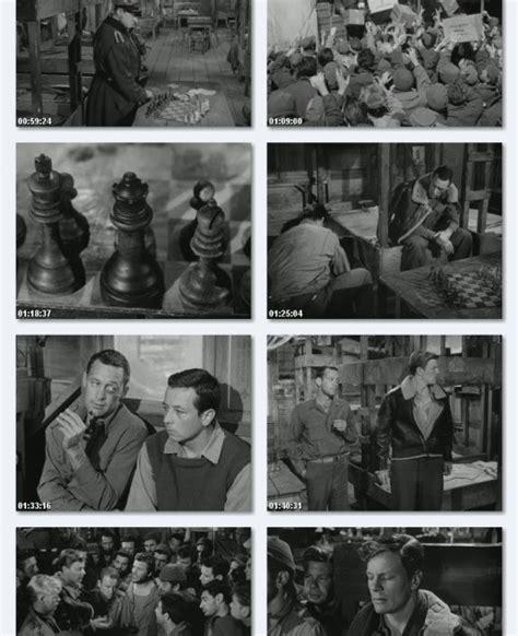 film bagus jerman nazi jerman stalag 17 1953 mata mata di dalam tubuh