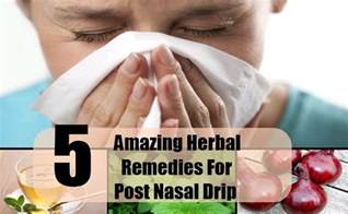 home remedy post nasal drip 5 amazing herbal remedies for post nasal drip how to