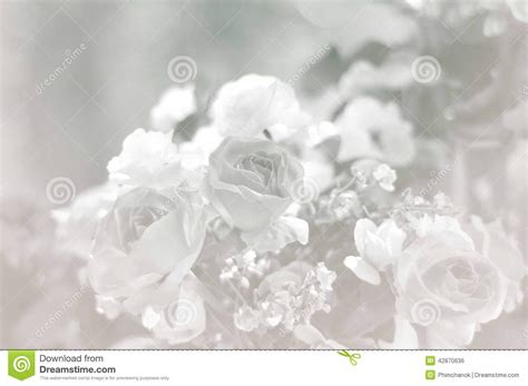 background engagement seamless romantic background stock photo image 42870636