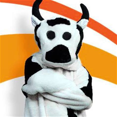 Win Money Competitions 2014 - sunrise cash cow competitions australian competitions