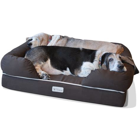 large dog couch top 5 large dog beds 2016 dogs recommend