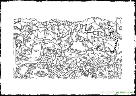 coloring pages rainforest rainforest coloring pages to download and print for free