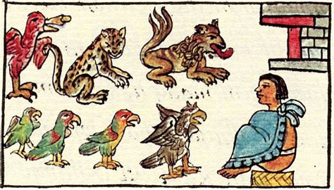 animal figures in the codices classic reprint books montezuma zoo a legendary treasure of the aztec empire