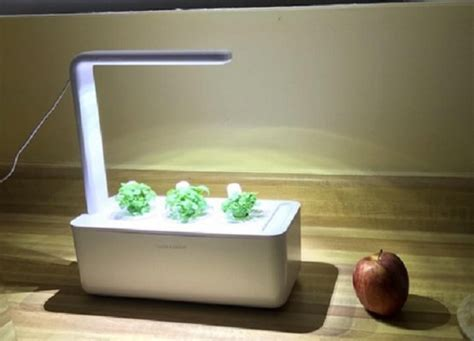 indoor hydroponic grow systems  garden kits