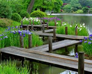 japanese garden plants ideas for your home margarite gardens