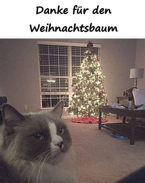 d nger f r weihnachtsbaum zitate spr 252 che memes debeste lustig witze lustige bilder fb xdpedia de 375
