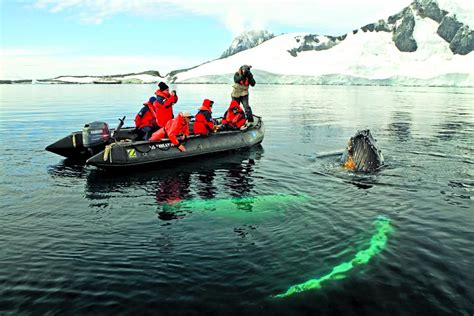 boat trip to antarctica how to plan a trip to antarctica