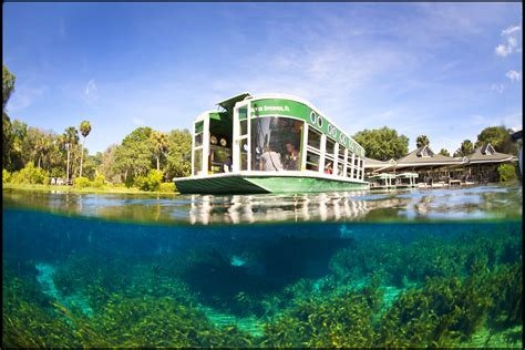 silver springs glass bottom boat silver springs state park world famous glass bottom boats