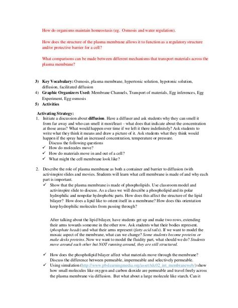 Homeostasis And Cell Transport Worksheet by 100 Homeostasis And Transport Worksheet Cell