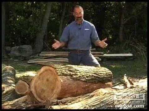 backyard sawmill backyard sawmill want want want diy projects