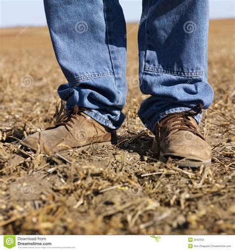 Caterpillar Midle Safety Boot in workboots stock image image of farmhand farmer
