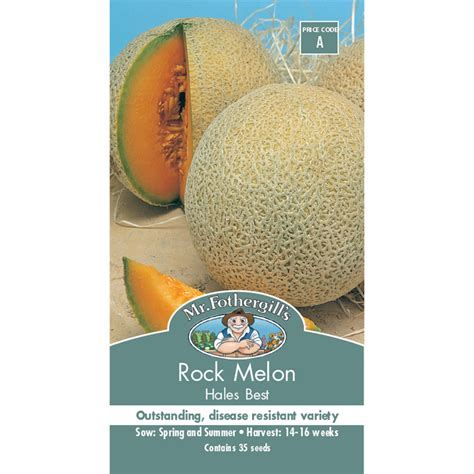 Mr Fothergills Best Of All mr fothergill s hales best rock melon vegetable seeds bunnings warehouse